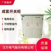 SF6开关型电缆分接箱 高压户外电缆分支箱