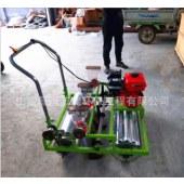 香菜胡萝卜精播机 汽油动力免间苗小青菜种植机 手推式蔬菜播种机